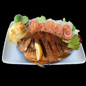 pescado-y-mariscos-recetapollo.com-recetas-de-pollo